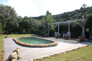 swimming pool at the farm