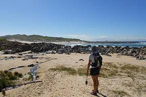 cape-st-francis-trails-hiking-and-accommodation